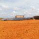 Article - Off Grid Somalie 2